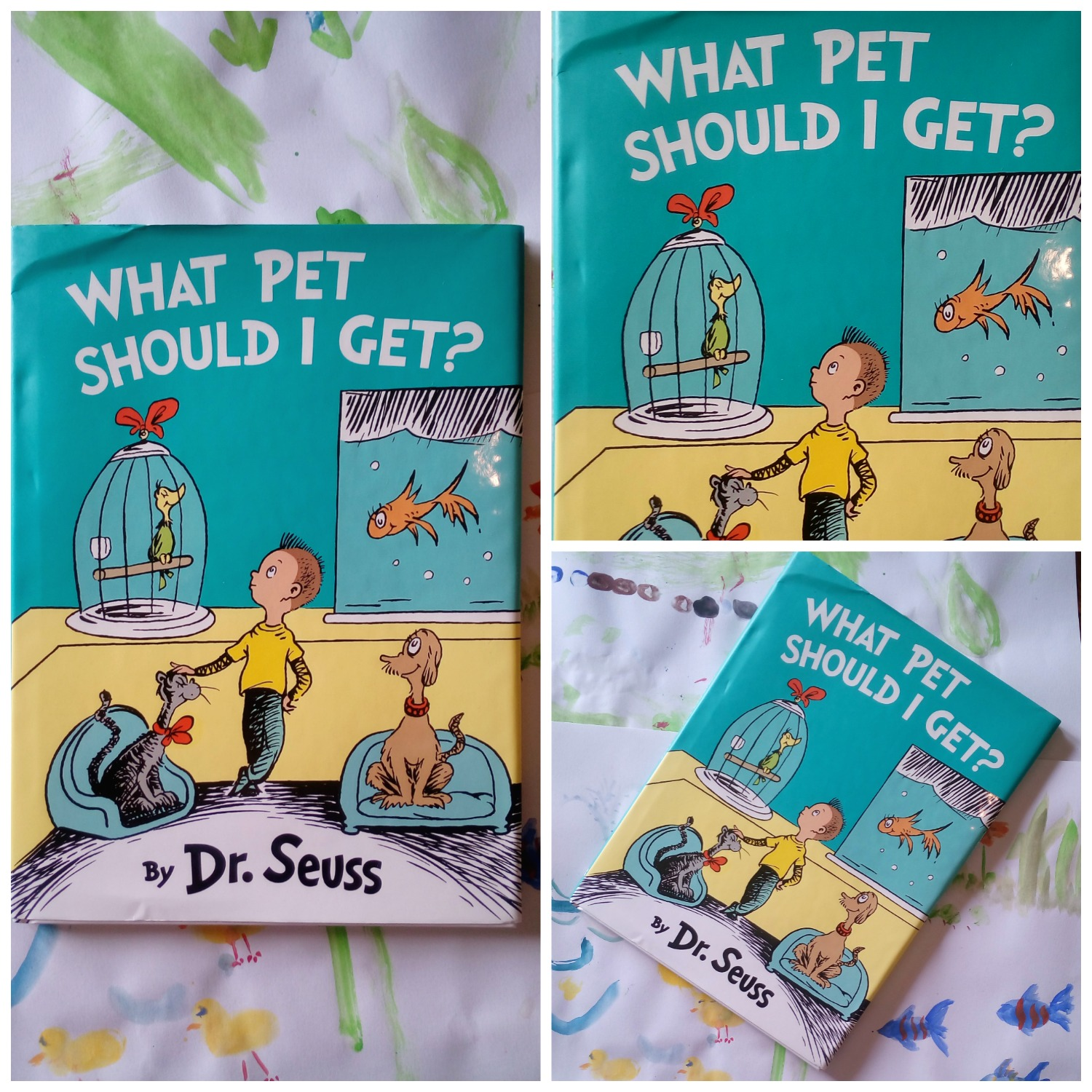 What Pet Should I Get Dr Suess  Review