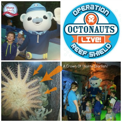 Octonauts Live Mums Take Five